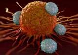 Іранські вчені розробляють нанолекарства від раку