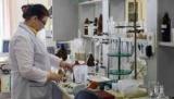 Ростуризм предупредил о рисках заражения лихорадкой чикунгунья в Италии
