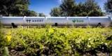 Индия может сначала запустить поезд Hyperloop