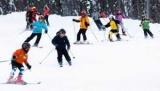 На острове Сахалин развивать горнолыжный туризм, - заявил глава региона