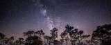 Українці зможуть спостерігати метеоритний дощ